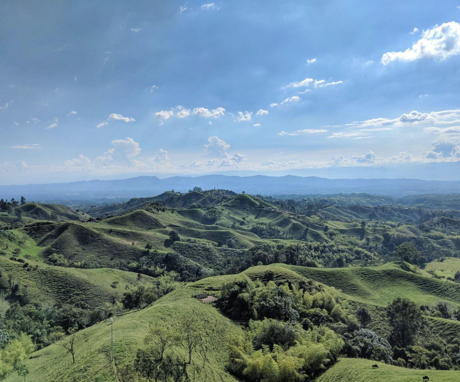 The verdant landscapes of Colombia | Michael Barón/Unsplash