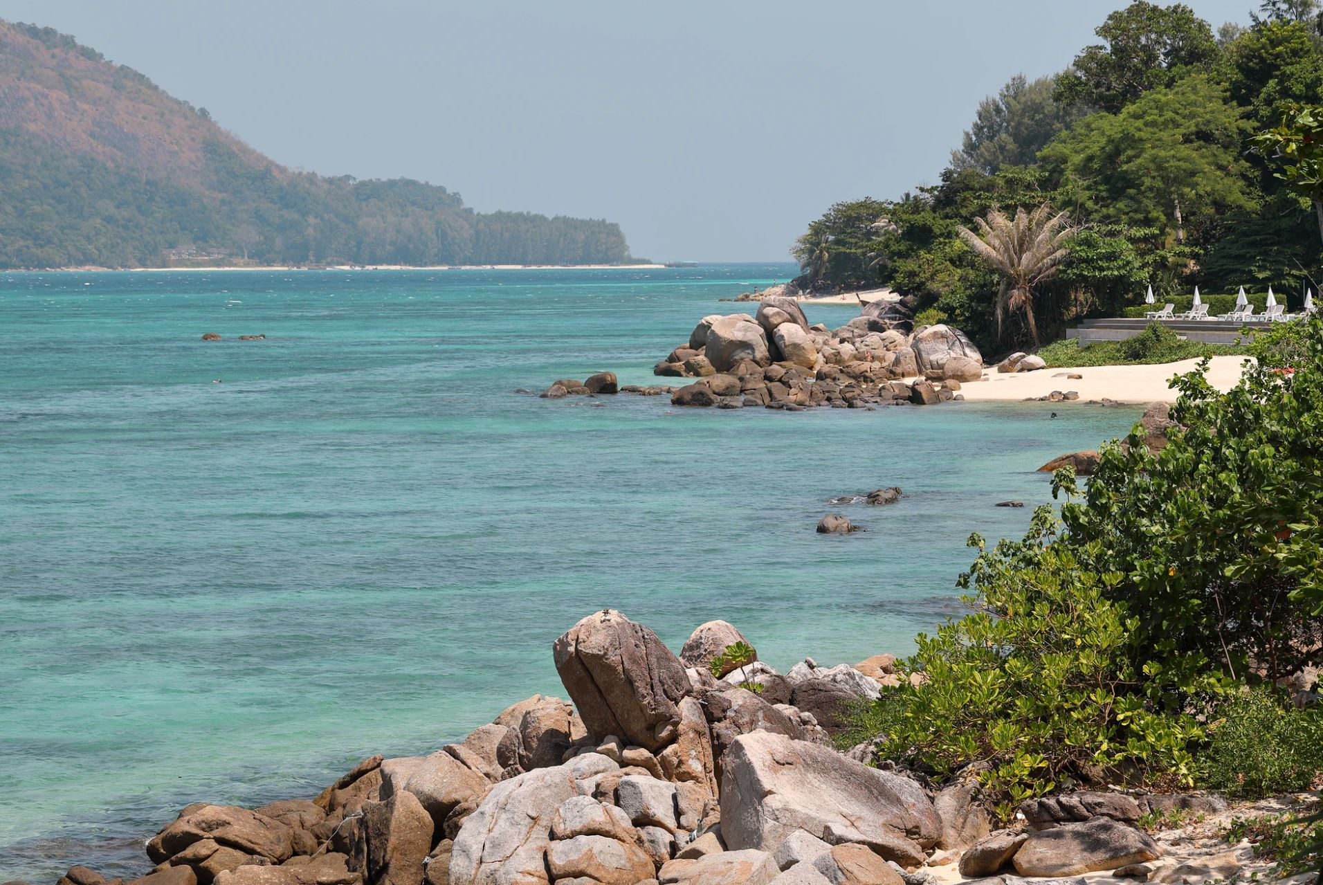 Trees by the water in Koh Lipe | Maksim Shutov/Unsplash